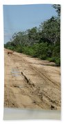IImages From The Pantanal Beach Towel