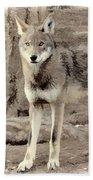 Illusion Of A Wolf Beach Towel