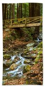 In The Forest - Limekiln State Park In California Beach Towel