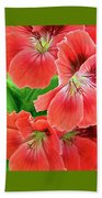 In The Garden. Geranium Beach Towel