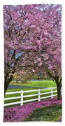 In The Pink Beach Towel by Debra and Dave Vanderlaan