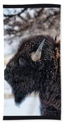 In The Presence Of  Bison - 6 Beach Towel