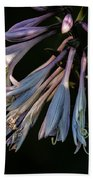 In The Shade Garden Beach Towel