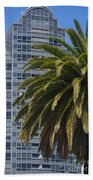 In The Shadows Of The Palm Beach Towel