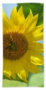 In The Sunflower Field Beach Towel