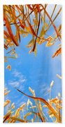 In The Wheat Beach Towel by Alexey Stiop