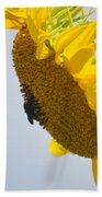 In The Wind - Sunflower Beach Towel