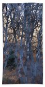 In The Woods V2 Beach Towel