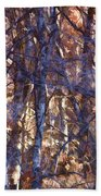 In The Woods V5 Beach Towel