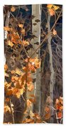 In The Woods V6 Beach Towel