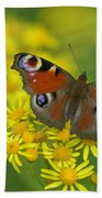 Inachis Io Butterfly On The Yellow Flowers Beach Towel