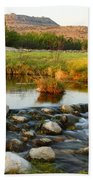 Independence Creek Preserve 2am-106000 Beach Towel