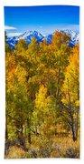 Independence Pass Autumn Colors Beach Towel