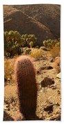 Indian Canyon Beach Towel