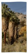 Indian Canyons Beach Towel