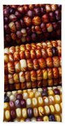 Indian Corn Harvest Time Beach Towel