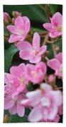 Indian Hawthorn Blossoms Beach Towel