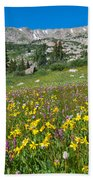 Indian Peaks Wildflower Meadow Beach Towel