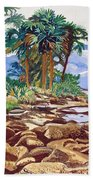 Indian River Lagoon Beach Towel