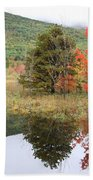 Indian Summer Acadia Park Beach Towel