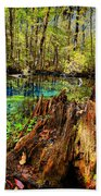 Indian Summer At Buford Spring Beach Towel