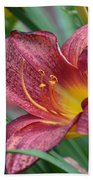 Inflamed - Lily Beach Towel