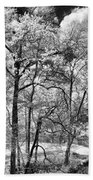 Infrared Stream Beach Towel