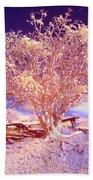 Infrared Tree Beach Towel