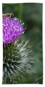 Insect On A Thistle Beach Towel
