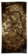 Into The Dark Wood Beach Towel