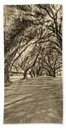 Into The Deep South - Paint 2 Sepia Beach Towel