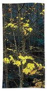 Into The Fall Beach Towel
