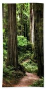 Into The Magical Forest Beach Towel
