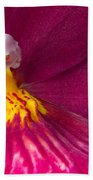 Into The Orchid Beach Towel