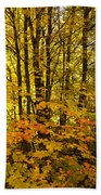 Into The Woods We Go  Beach Towel