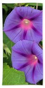 Ipomea Acuminata Morning Glory Beach Towel