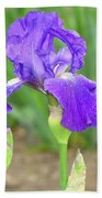 Iridescent Flower Beach Towel
