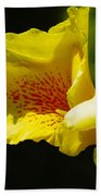 Iris 1 Beach Towel