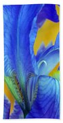 Iris 4 Beach Towel