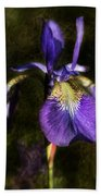 Iris Baroque Beach Towel