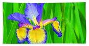Iris Blossom Beach Towel