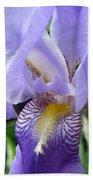 Iris Close Up 3 Beach Towel