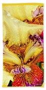 Iris - Customized Beach Towel