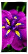 Iris Flower Beach Towel