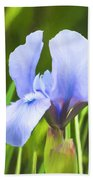 Pale Purple Iris - Impressions Of Spring Beach Towel