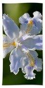Iris Pacifica Beach Towel