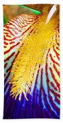 Iris Petal By Jan Marvin Beach Towel