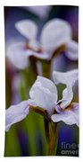Iris Pictures 195 Beach Towel