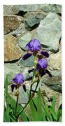 Iris Portrait Beach Towel