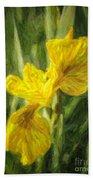 Iris Pseudacorus Yellow Flag Iris Beach Towel